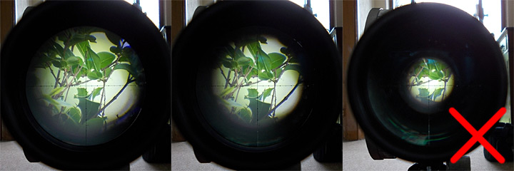 Scope With Correct Eye Relief And Sharply Focused Crosshairs The Edge Of Picture Is Pin Sharp